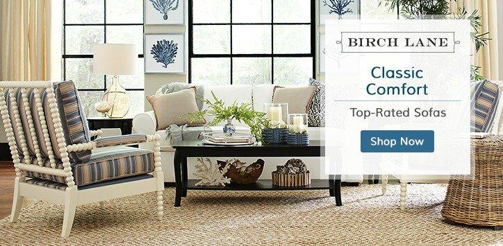 Birch Lane Living Room Furniture