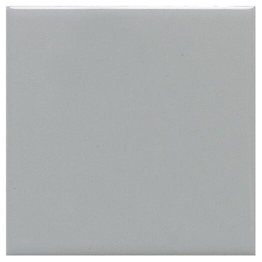 Daltile Modern Dimensions 2'' x 4'' Ceramic Mosaic Tile in Desert Gray
