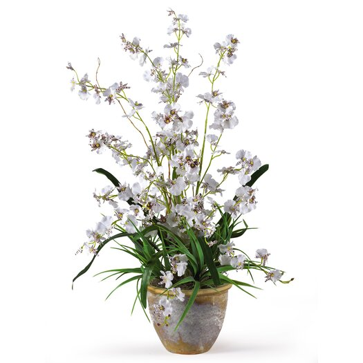 Nearly Natural Dancing Lady Orchid Flowers in White