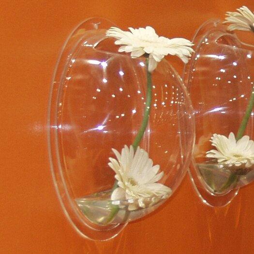 Boom Design Hemisphere Fish Bowl Wall Vase