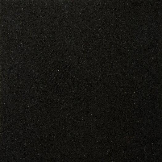 "Emser Tile Natural Stone 18"" x 18"" Granite Field Tile in Absolute Black"