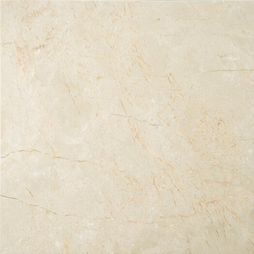 """Emser Tile Natural Stone 12"""" x 12"""" Marble Field Tile in Crema Marfil Classico"""