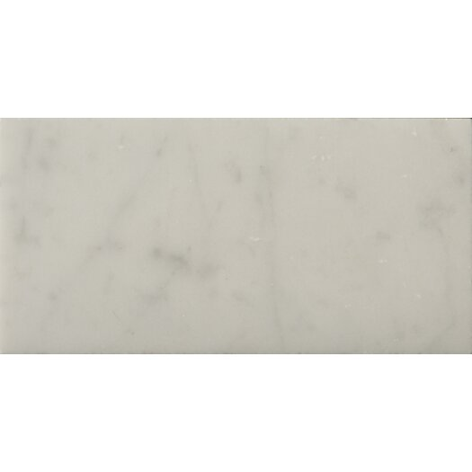 "Emser Tile Natural Stone 3"" x 6"" Marble Subway Tile in Bianco Gioia"