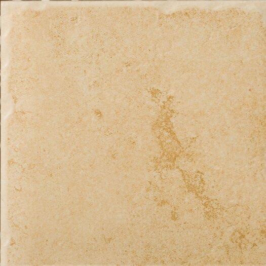 """Emser Tile Genoa 20"""" x 20"""" Porcelain Field Tile in Albergo"""