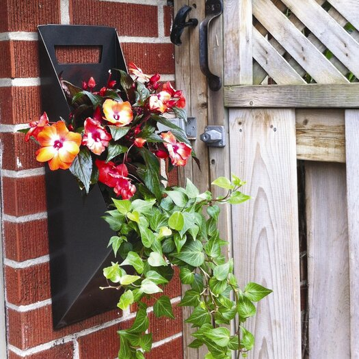 Decorpro Novelty Wall and Hanging Planter