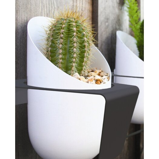 Decorpro Novelty Hanging Planter