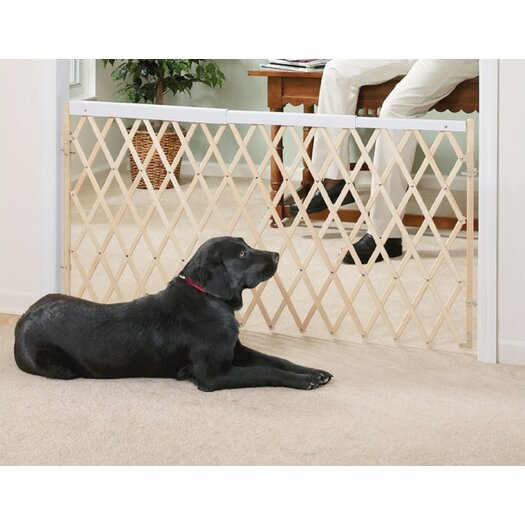 """Evenflo Safety 60"""" Expansion Swing Gate"""