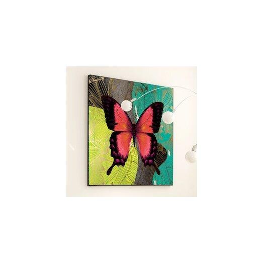 Girls Bedroom Ceiling Light Black And White Bedroom Wall Decor Bedroom Images Michael Jordan Bedroom Decor: JORDAN CARLYLE Metamorphosis Modern Butterfly Framed