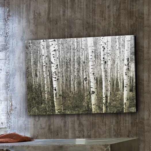 Parvez Taj Aspen Highlands Graphic Art on Premium Wrapped Canvas
