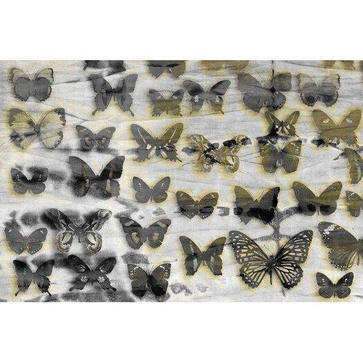 Butterfly Shadows Graphic Art on Premium Wrapped Canvas