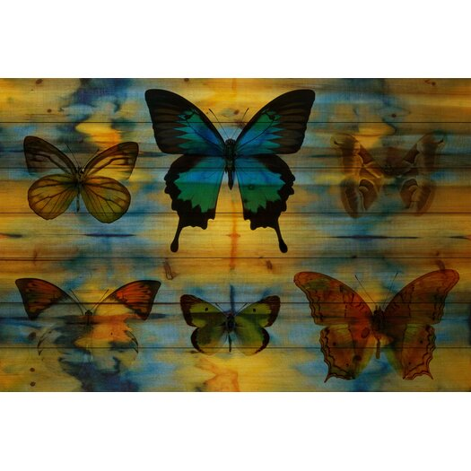 Lepidoptera-Wall Art on Natural Pine Wood