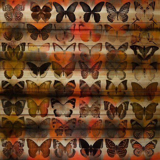 Moths in Rows-Wall Art on Natural Pine Wood