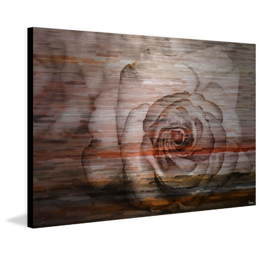 Sleeping Rose Photographic Print