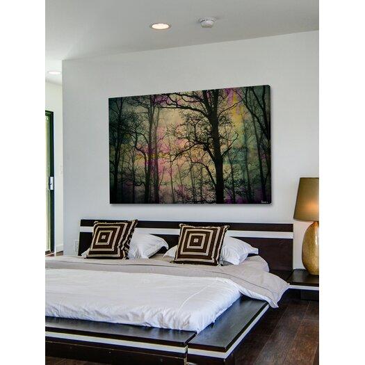 Parvez Taj Night Sight Graphic Art on Premium Wrapped Canvas
