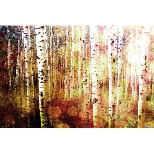 Parvez Taj Aspen Graphic Art on Premium Wrapped Canvas