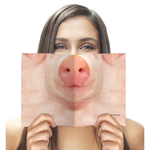 Molla Space, Inc. Pig Sniffing Notebook