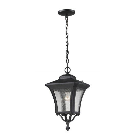 Z-Lite Waterdown 1 Light Outdoor Hanging Lantern