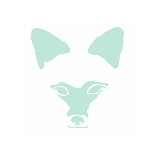 Avalisa Animal Faces Fox Stretched Canvas Art