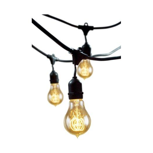 Bulbrite Industries Rachael Incandescent 15 Light Outdoor String Light