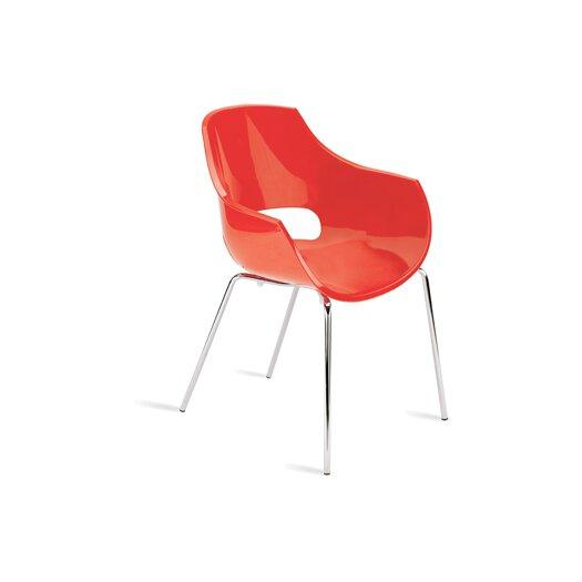 Papatya Opal Arm Chair