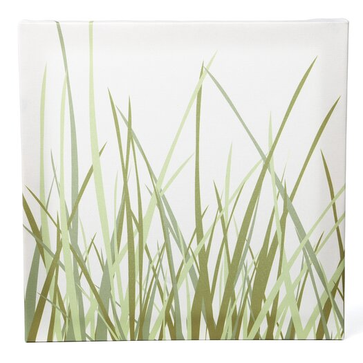 Inhabit Nourish Summer Grass Stretched Graphic Art on Wrapped Canvas