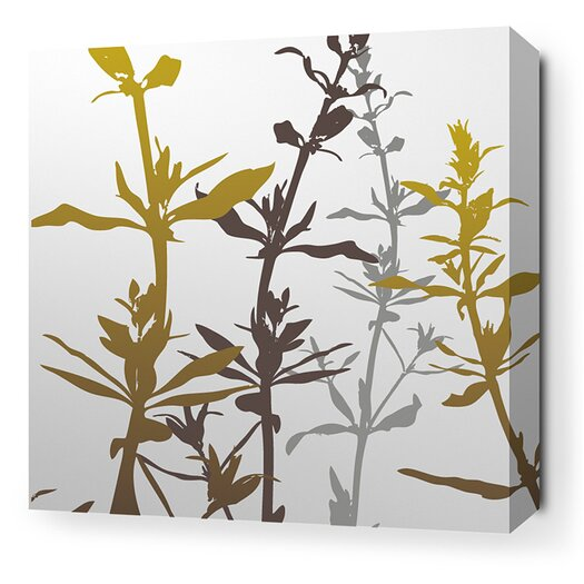 Inhabit Morning Glory Wildflower Stretched Graphic Art on Wrapped Canvas in Silver and Olive