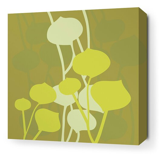 Aequorea Seedling Graphic Art on Wrapped Canvas