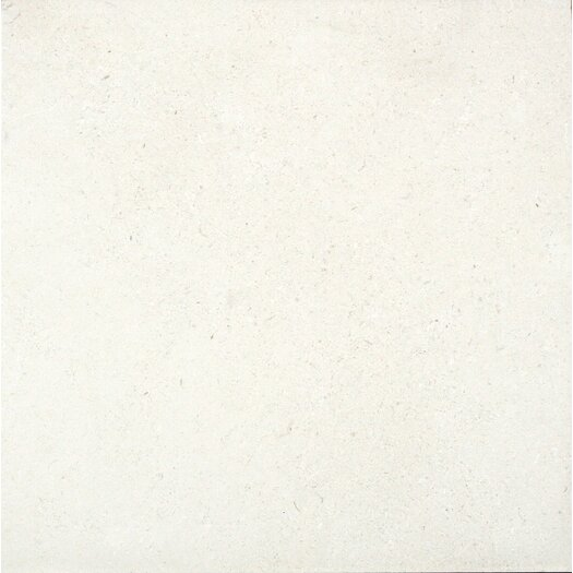 "Faber Applestone Tile 16"" x 16"" Limestone Honed Tile in Light Cream"