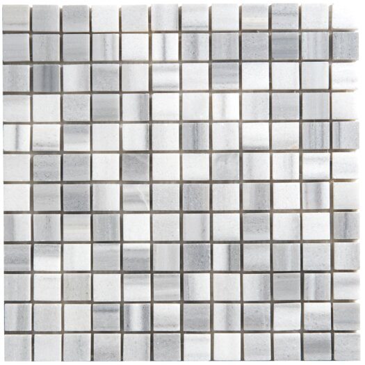"Faber Equator 1"" x 1"" Marble Polished Mosaic in White and Gray"