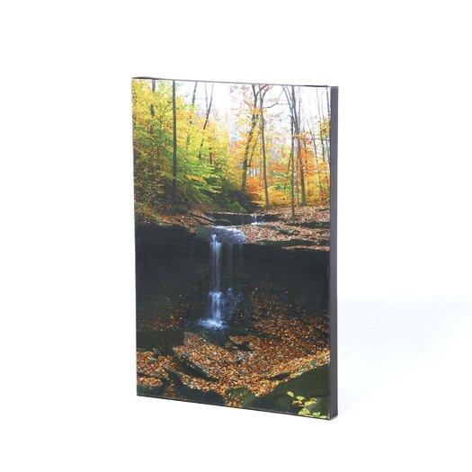 Trademark Fine Art 'Blue Hen Falls' by Kurt Shaffer Photographic Print on Canvas