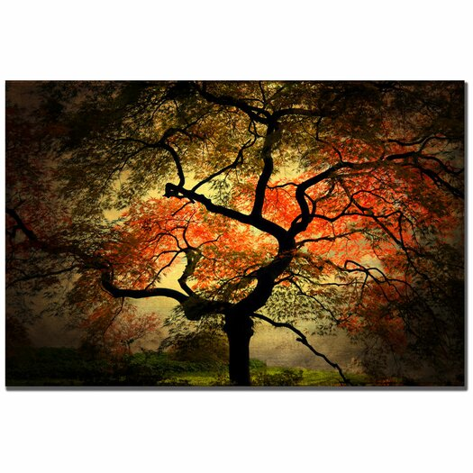 Trademark Fine Art 'Japanese' by Philippe Sainte-Laudy Photographic Print on Canvas