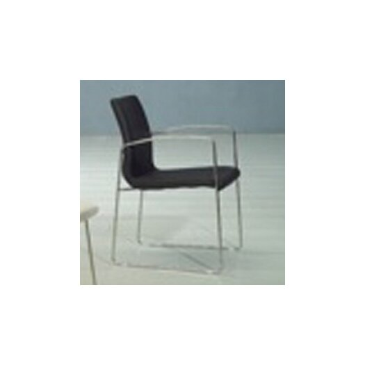 Whiteline Imports Marco Dining Arm Chair