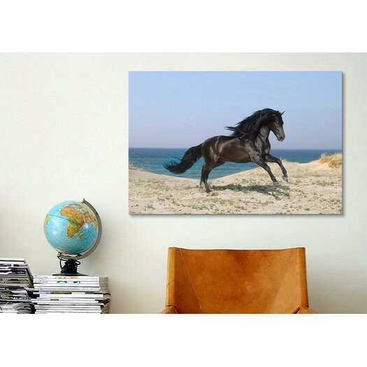 iCanvas 'Black Horse on the Beach' by Bob Langrish Photographic Print on Canvas