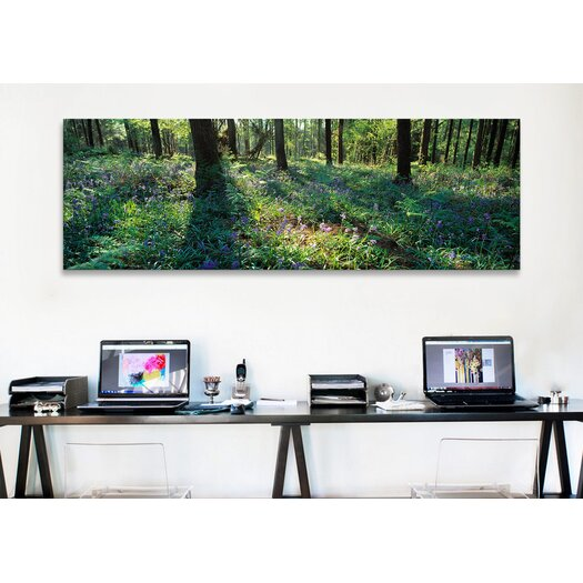 iCanvas Panoramic Bluebells Growing in a Forest, Exe Valley, Devon, England Photographic Print on Canvas