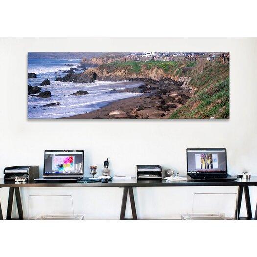 iCanvas Panoramic 'Elephant Seals on the Beach, San Luis Obispo County, California' Photographic Print on Canvas