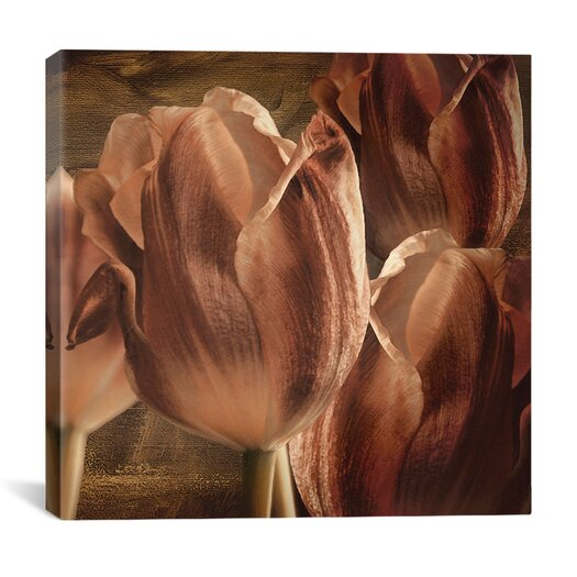 "iCanvas ""Copper Tulips"" by Mindy Sommers Graphic Art on Canvas"