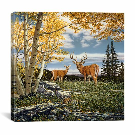 """iCanvas """"Woodland Meadows"""" by John Van Straalen Painting Print on Wrapped Canvas"""