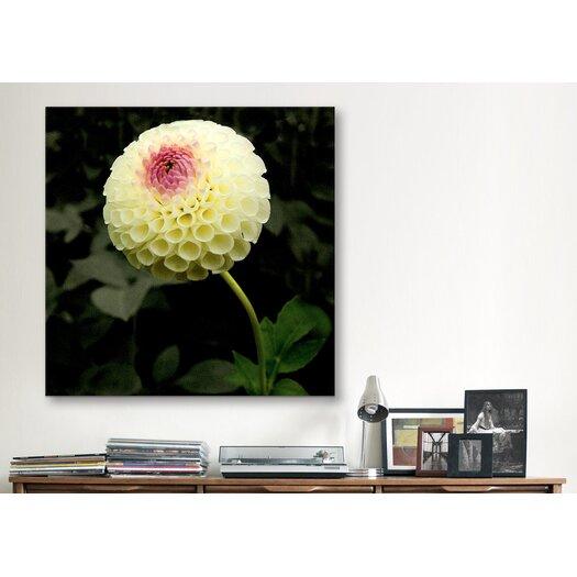 "iCanvas ""Special Flowers Garden"" Canvas Wall Art by Harold Silverman"