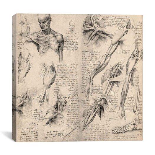 "iCanvas ""Sketchbook Studies of Human Body Collage"" by Leonardo da Vinci Graphic Art on Wrapped Canvas"