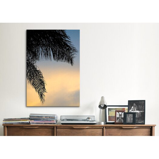 iCanvas 'Sundown Sky' by Harold Silverman - Foilage and Greenery Photographic Print on Canvas