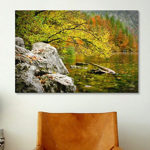 iCanvas 'Reaching Color' by Dan Ballard Photographic Print on Canvas