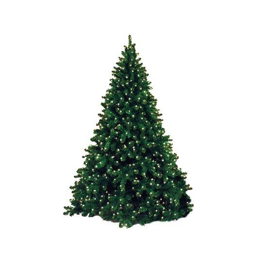 Queens of Christmas 9' Pre-lit Artificial Sequoia Tree