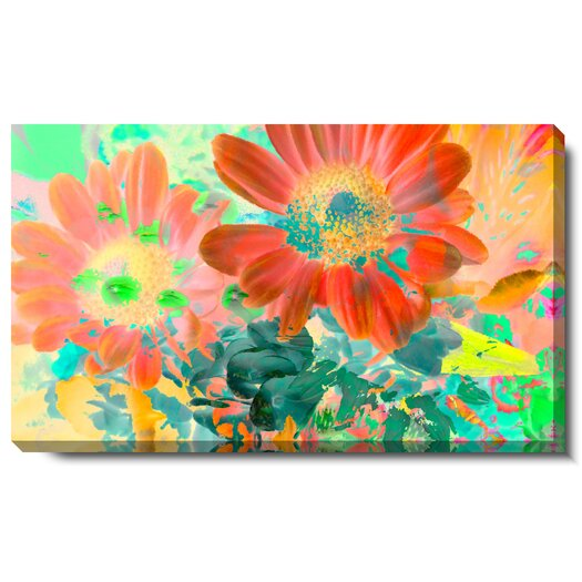 "Studio Works Modern ""May Daisies"" Gallery Wrapped by Zhee Singer Graphic Art on Wrapped Canvas"