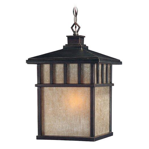 Dolan Designs Barton 1 Light Outdoor Hanging Lantern