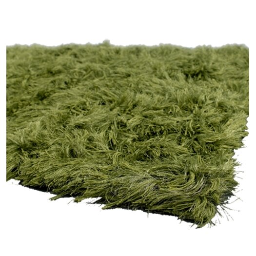 Chandra Rugs Celecot Green Area Rug