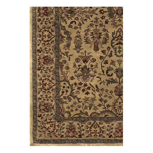 Chandra Rugs Panna Gold/Yellow Area Rug