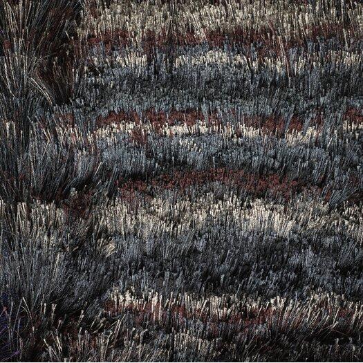 Chandra Rugs Savona Black/Gray Area Rug