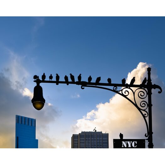 New York City is for The Birds Photographic Print on Canvas