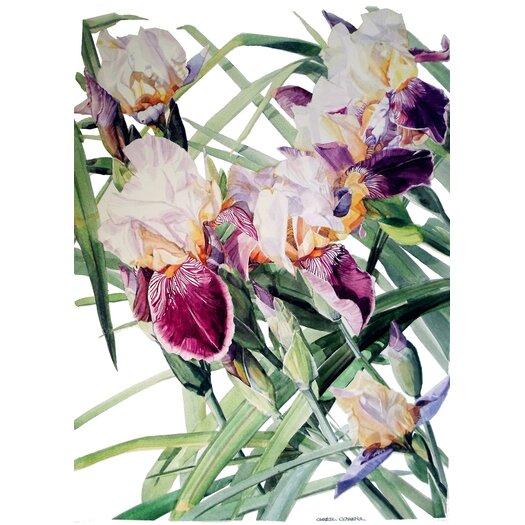 Iris Vivaldi Spring Giclee Graphic Art on Canvas