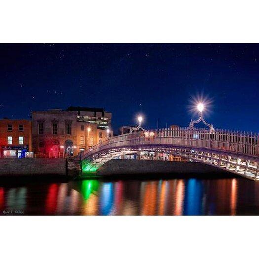 The Ha'penny Bridge on a Winter Night in Dublin Photographic Print